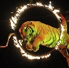 Цирки в Карабаше